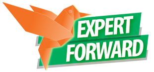 Expert Forward Logo